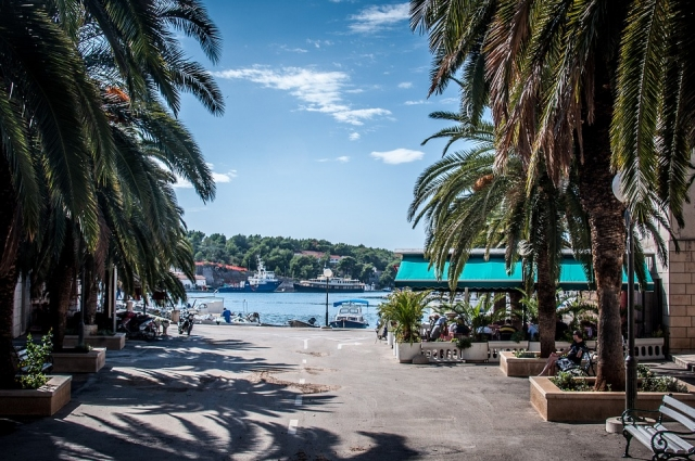 A promenade surrounded by palm trees in the center of Milna next to the harbor